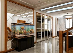 Aquarium-Decoration-interieur