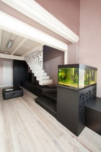 aquarium-integrer-salon-escalier