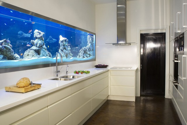 Aquarium integrer salon idees cuisine dar d co for Decoration d interieur idee