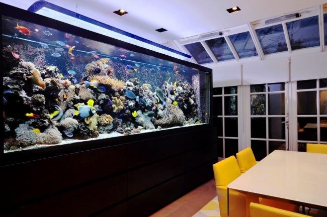 aquarium-integrer-salon-idées-salle-a-manger
