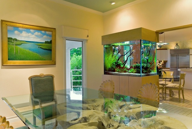 Aquarium salon magnifique dar d co d coration int rieure maison tunisie - Decorative fish tanks for living rooms ...