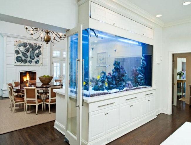 aquarium salon separation dar d co d coration. Black Bedroom Furniture Sets. Home Design Ideas